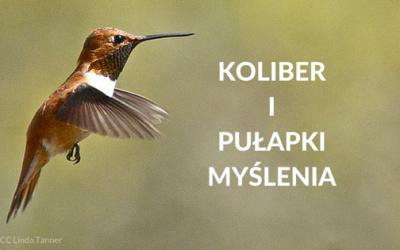 Koliber i pułapki myślenia